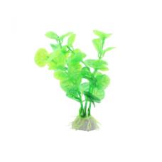 Planta decorativa pentru acvariu Enjoy Bacopa verde 10 cm
