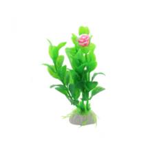 Planta decorativa pentru acvariu Enjoy Dracena Firebrand 10 cm