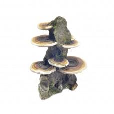Decor pentru acvariu Enjoy Roca cu ciuperci 14.5x9.5x18.5 cm
