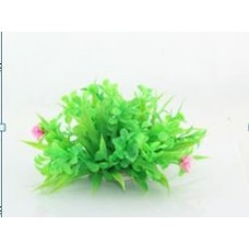 Planta decorativa pentru acvariu Cardamine Lyrata Enjoy 10cm