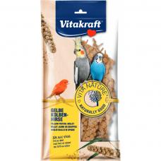 Supliment alimentar pentru pasari Vitakraft Vitanature Spice Mei 80G