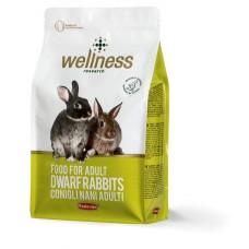 Wellness Iepuri 3 kg