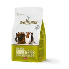 Wellness G-Pig 1 kg