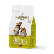 Wellness Hamsteri 1 kg