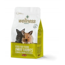 Wellness Iepure Junior 1 kg