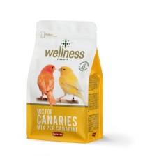 Hrana pentru canari Wellness 1 kg