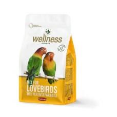 Hrana pentru agapornisi Wellness 850 g