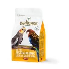 Hrana pentru nimfe Wellness 850 g