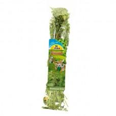 Recompensa pentru rozatoare Jr Farm urzica 40 g