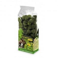 Recompense pentru rozatoare Jr Farm cu papadie 140 g